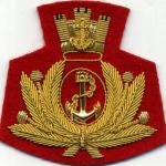 "1º Reggimento ""San Marco"""